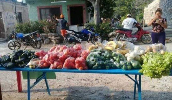 cosecha-ixil-coronavirus-fruta-verdura-696x405