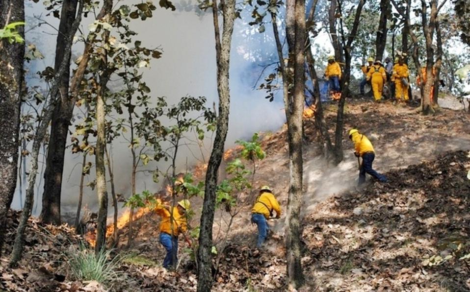 brigadistas-apagar-incendio-reserva-biosfera_0_1_800_498